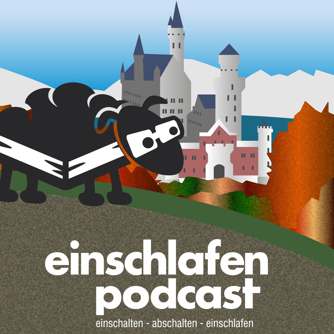 EP 309 - Brüdertournee und Immanuel Kant - Episodenbild